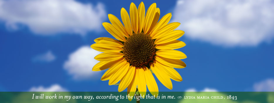 golden sunflower in a blue sky